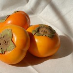 persimmons-1456186_960_720