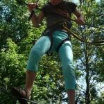 climbing-garden-421538_960_720