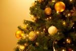 要申込!白い貝殻で素敵なクリスマスオーナメントを作ろう♪【12月2日】オーナメント作りを楽しもう The Beach christmas 西武大津店