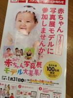 スタジオマリオの赤ちゃんモデルキャンペーンがとってもお得♪6ヶ月〜2歳までのお子様、ぜひ参加してみて♪