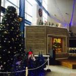 【12月25日(日)まで】イオン近江八幡 AQUA21にてクリスマスイルミネーション点灯中!商品券1万円が当たるフォトコンテストも開催中!
