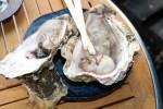 新鮮な天然真牡蠣をテーブルで蒸し焼きに!舞鶴市の「かき小屋」へ食べにいってみませんか?