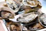 牡蠣好きさんいらっしゃ~い!若狭フィッシャーマンズワーフで牡蠣小屋OPEN!