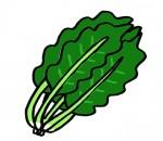 草津でギネス世界記録に挑戦!果物・野菜の仮装をして草津川跡地公園に集合だ!