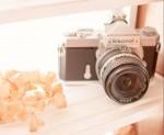 ロクハ公園で撮った素敵な写真を送ろう!ロクハ写真展作品大募集!