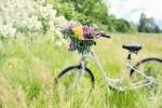 自転車の買い替えなら「AEON BIKE」「イオンサイクルショップ」へ!ワンコインメンテナンスもしています!