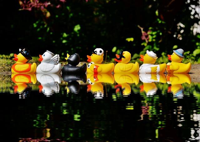 rubber-ducks-1408308_640