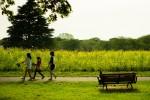 【3月18日(土)】春の野に出て草花を摘もう!守山市・美崎公園にて自然体験教室開催!