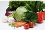 """野菜を楽しく学んで""""キッズ野菜ソムリエ""""になろう!3月19日は大津市で「キッズ野菜ソムリエ育成プロジェクト」が開催!"""