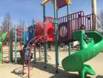 ちょうどいい規模!こどもと思いっきり公園遊びを楽しむなら、彦根城横の「金亀公園」がオススメ!