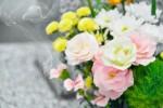 3月18日~20日はアグリの里栗東で「お彼岸感謝祭」が開催!春ならではの商品がお買い得!おなじみミニドクターイエローも登場♪