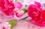 フォレオ大津一里山で「母の日似顔絵」を募集中!描いた似顔絵はストラップにしてもらえます♪4月8日まで!