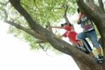 5月13日は野洲市の湖岸緑地で「ツリーイング~木登り体験~」が開催!インストラクターと一緒に木登りを体験しよう♪申込は4月1日開始!