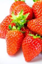 【3月11日(土)】地元産いちごを食べ比べ!もりやまマルシェ特別企画「いちごフェア」開催!
