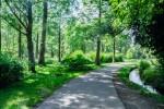 【5月3日(水・祝)】出店料無料!ゴールデンウィークは守山市みさき自然公園でフリマを楽しもう!