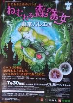 子供のためのバレエ「ねむれる森の美女」を観よう!終演後、踊り出したくなる舞台です!☆4歳~入場OK、4歳未満は託児あり