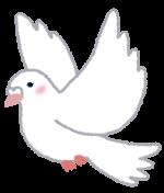 平和堂の子育てママ応援割引制度「らぶきっず」。なんと手軽で便利なアプリでも利用できちゃうんです!!