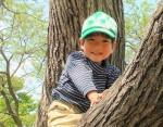 夏休みの人気企画!8月19日は東近江市で「親子凧作り教室」が開催!親子でカブトムシの凧を作ろう!申込は7月10日から!