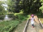 自然にたっぷり触れよう!東近江市にある「河辺いきものの森」は夏休みのおでかけにもオススメ♪