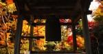【10月9日(祝)】数珠づくり体験や地獄のお話講座も!草津市・西方寺にて子育て地蔵のMamaマルシェ開催!