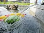 2周年記念!高島市「ラシーヌホーム針江」にてありがとう大感謝祭が開催!水の郷での特別な時間と夏休みならではの企画をお楽しみください♪