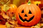 【10月29日】アクトパルのハロウィン!スタンプラリー・ビンゴ大会・焚き火でお菓子作りなど☆参加無料♪