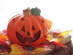 【10月27日】イオンにてベビーサインハロウィンパーティーが開催♪事前予約で嬉しいお土産も有!