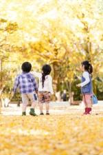秋深まった森で楽しもう!11月18日はびわこ地球市民の森にて「のやまであそぼう」開催☆