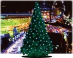 第4回草津まちイルミは11月2日(木)スタート!点灯式にスタンプラリー、たび丸サンタ探しもあるよ♪