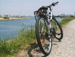 【11月26日(日)】憧れのロードバイクが当たる!ママチャリでも参加OKな「モリイチ・スタンプラリー」