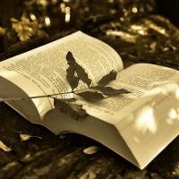 book-2855857_640