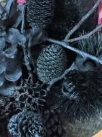 木の実などの自然のものを使って炭焼きを楽しもう☆焼きイモできるよ!参加無料♪