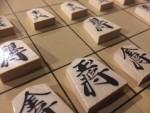 将棋を習って楽しく遊びませんか!初めて将棋を習う超初級者コース(4回講座)!☆中級コースの対局講座もあり