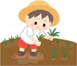 """<小学生対象>田植えから始まって、最後は収穫したもち米でクッキング!宝酒造の""""田んぼの学校""""、ただ今参加者募集中!"""