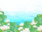 """<草津市民入園無料>水生植物公園みずの森の""""水無月ふぇすた""""は、6月17日(日)開催だよ!"""