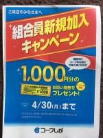 コープしがの組合員になるなら今がチャンス!新規加入で店舗限定1000円のお買い物券と人気商品がもらえるよ♪
