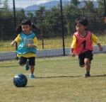はじめてさん限定体験会♪体操、サッカー、野球、運動あそびを体験してみませんか?夢中になれるスポーツがみつかるかも!