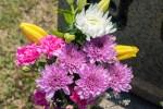 3月17日・18日はアグリの里栗東で「お彼岸感謝祭」が開催!春ならではのお買い得商品がたくさん!ミニドクターイエローも登場♪