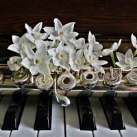 piano-1399926_640