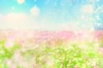 春をいっぱい感じよう!5月3日・4日は京都・梅小路公園にて「梅小路公園グリーンフェア2018春」開催☆入場無料♪