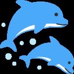 GW限定!京都水族館にて「夜のすいぞくかん」開催!