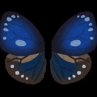 bug_chou_marubane_rurimadara