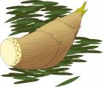 6月9日は愛知川河川敷で「愛知川愛林作業体験とタケノコイベント2018」が開催!タケノコ掘りやタケノコ料理試食もあり!