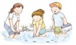 かいどり大作戦で、川の魚と仲良くなろう!7月28日(土)に日野川支流の佐久良川で開催だよ♪