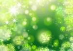 【7月22日】緑濃くなった夏の森で遊ぼう!びわこ地球市民の森にて「のやまであそぼう」開催☆