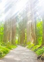 《8月12日》季節の変化をじっくり観察!草津市のロクハ公園で「ロクハツアー2018(8月)」が開催!参加無料♪