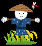 稲刈りをしよう!9月9日☆稲刈りから脱穀、新米も食べれるよ!