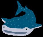 海遊館「おとまりスクール」参加者募集中!夜の海遊館探検も☆【6月の土日】