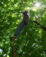 《10月27日》大きな木の上の世界を体験しよう!びわこ文化公園で「ツリーイング(木登り体験)」が開催!小学生以上、親子参加もOK!