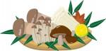 《10月28日》湖東三山館あいしょうで「軽トラ朝市」が開催!本場長野県からお取り寄せのりんごやキノコも登場!